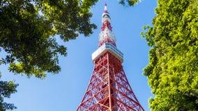 Πύργος του Τόκιο το καλοκαίρι και ένα πράσινο δέντρο το Μάιο 13.2016 στο Τόκιο, J Στοκ φωτογραφία με δικαίωμα ελεύθερης χρήσης