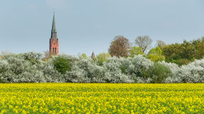 Πύργος του ST Martin και πύργος Δημαρχείων σε Nienburg στοκ φωτογραφίες