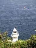 Πύργος φάρων θάλασσας Στοκ φωτογραφίες με δικαίωμα ελεύθερης χρήσης
