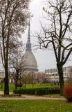 Πύργος Antonelliana τυφλοπόντικων στο Τορίνο, Ιταλία Στοκ εικόνες με δικαίωμα ελεύθερης χρήσης