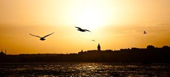 Πύργος Galata Στοκ φωτογραφία με δικαίωμα ελεύθερης χρήσης
