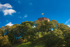 πύργος gediminas στοκ φωτογραφίες με δικαίωμα ελεύθερης χρήσης