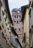 Πύργος Guinigi στο υπόβαθρο Στοκ Φωτογραφία