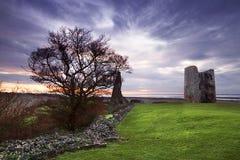 Πύργος Hadleigh Στοκ Εικόνα