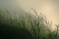 Πύργος Jested στην ελαφριά ομίχλη από κάτω από Στοκ Εικόνα