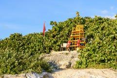 Πύργος Lifeguard στην παραλία με το πράσινο υπόβαθρο βλάστησης και μπλε ουρανού στοκ εικόνα με δικαίωμα ελεύθερης χρήσης