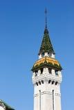 Πύργος Mures Tirgu Στοκ Εικόνες