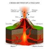 Πύρινη έκρηξη ηφαιστείων στη διατομή Επιστημονικό σχέδιο εκπαίδευσης Στοκ φωτογραφία με δικαίωμα ελεύθερης χρήσης