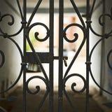 Πύλη πίσω από το τεμάχιο πυλών επεξεργασμένος-σιδήρου στοκ φωτογραφία με δικαίωμα ελεύθερης χρήσης