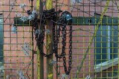 πύλη που κλειδώνεται Στοκ Εικόνα
