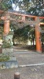Πύλη της Tori στοκ φωτογραφία