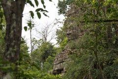 Πύλη του ναού TA Prohm, Angkor Wat, Καμπότζη Στοκ φωτογραφίες με δικαίωμα ελεύθερης χρήσης