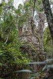 Πύλη του ναού TA Prohm, Angkor Wat, Καμπότζη Στοκ Εικόνες