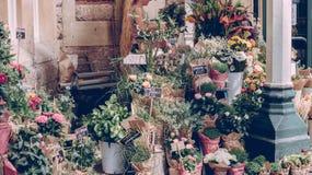 πώληση λουλουδιών Στοκ Εικόνα