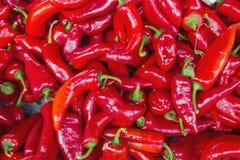 Πώληση του καυτού κόκκινου πιπεριού Στοκ φωτογραφία με δικαίωμα ελεύθερης χρήσης