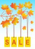 Πώληση φθινοπώρου απεικόνιση αποθεμάτων