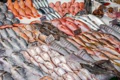 πώληση φρέσκιας αγοράς ψα&r στοκ εικόνες