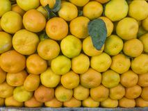 Πώληση tangerine των φρούτων αναπόφευκτα φρούτα της χειμερινής εποχής στοκ εικόνα με δικαίωμα ελεύθερης χρήσης