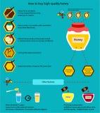Πώς να αγοράσει το ποιοτικό μέλι διανυσματική απεικόνιση