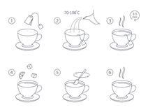 Πώς να κάνει το τσάι με την οδηγία τσαντών τσαγιού διανυσματική απεικόνιση