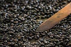 Πώς να παραγάγει τον καφέ στην Κολομβία στοκ φωτογραφία με δικαίωμα ελεύθερης χρήσης