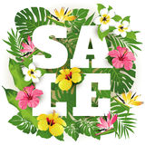 Πώληση Τροπικά λουλούδια, φύλλα και φυτά Στοκ Φωτογραφία