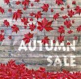 Πώληση φθινοπώρου και κόκκινα μειωμένα φύλλα που βάζουν στο ξύλινο υπόβαθρο Στοκ Εικόνα