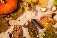 Πώληση φθινοπώρου Στοκ Φωτογραφία