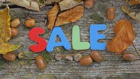 Πώληση φθινοπώρου Στοκ φωτογραφία με δικαίωμα ελεύθερης χρήσης