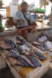 πώληση ψαριών Στοκ Εικόνα