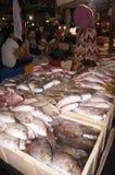 πώληση ψαριών Στοκ Φωτογραφία