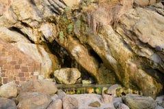 Πλάγια όψη απότομων βράχων που παρουσιάζει φυσική αύξηση εγκαταστάσεων στην παραλία όρμων ξύλων, Λαγκούνα Μπιτς, Καλιφόρνια Στοκ Φωτογραφία
