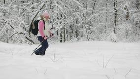 Πλάγια όψη της ενεργού γυναίκας που κάνει το σκανδιναβικό περπάτημα με τους πόλους σκι στην πορεία στη χειμερινή φύση υπαίθρια Η  φιλμ μικρού μήκους