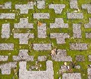 πλάκες επίστρωσης χλόης Στοκ φωτογραφία με δικαίωμα ελεύθερης χρήσης