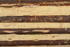 Πλάκες φρακτών Στοκ εικόνα με δικαίωμα ελεύθερης χρήσης