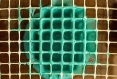 Πλέγμα με slime τη ζελατίνα στοκ εικόνες