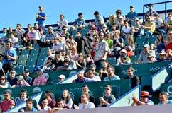 Πλήθος στο τρόπαιο 2013 της ΟΔΓ Tiriac Nastase Στοκ φωτογραφίες με δικαίωμα ελεύθερης χρήσης
