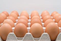 Πλήρες κιβώτιο των αυγών σε ένα ψυγείο Στοκ Φωτογραφία