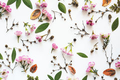 Πλήρες Floral σχέδιο πλαισίων Στοκ Εικόνες