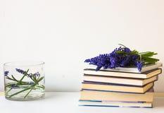 πλήρης άνοιξη λιβαδιών πικραλίδων ανασκόπησης κίτρινη Μπλε λουλούδια σε ένα βάζο γυαλιού φρέσκες τουλίπες ενός στις μπλε παλαιές  Στοκ εικόνα με δικαίωμα ελεύθερης χρήσης