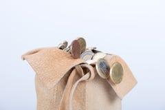 Πλήρης τσάντα των νομισμάτων Στοκ Εικόνες
