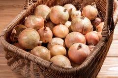 πλήρη κρεμμύδια καλαθιών στοκ φωτογραφία με δικαίωμα ελεύθερης χρήσης