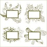 πλαίσια με τα λουλούδια Στοκ εικόνες με δικαίωμα ελεύθερης χρήσης