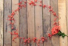 Πλαίσια λουλουδιών στο ξύλινο υπόβαθρο Στοκ εικόνα με δικαίωμα ελεύθερης χρήσης