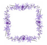 Πλαίσια λουλουδιών Στοκ φωτογραφίες με δικαίωμα ελεύθερης χρήσης