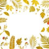Πλαίσιο από τα κίτρινα φύλλα και τα ξηρά φύλλα και λουλούδι στο άσπρο υπόβαθρο Στοκ εικόνα με δικαίωμα ελεύθερης χρήσης