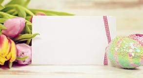 πλαίσιο αυγών Πάσχας χρώματος καρτών που χαιρετά το ευτυχές φυτό Στοκ φωτογραφία με δικαίωμα ελεύθερης χρήσης