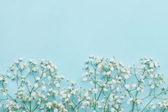 Πλαίσιο γαμήλιων λουλουδιών στον μπλε πίνακα άνωθεν επίπεδος βάλτε το ύφος στοκ φωτογραφίες