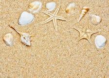 Πλαίσιο κοχυλιών άμμου και θάλασσας στοκ εικόνα