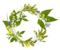 Πλαίσιο κύκλων από τα λουλούδια άνοιξη Στοκ εικόνα με δικαίωμα ελεύθερης χρήσης